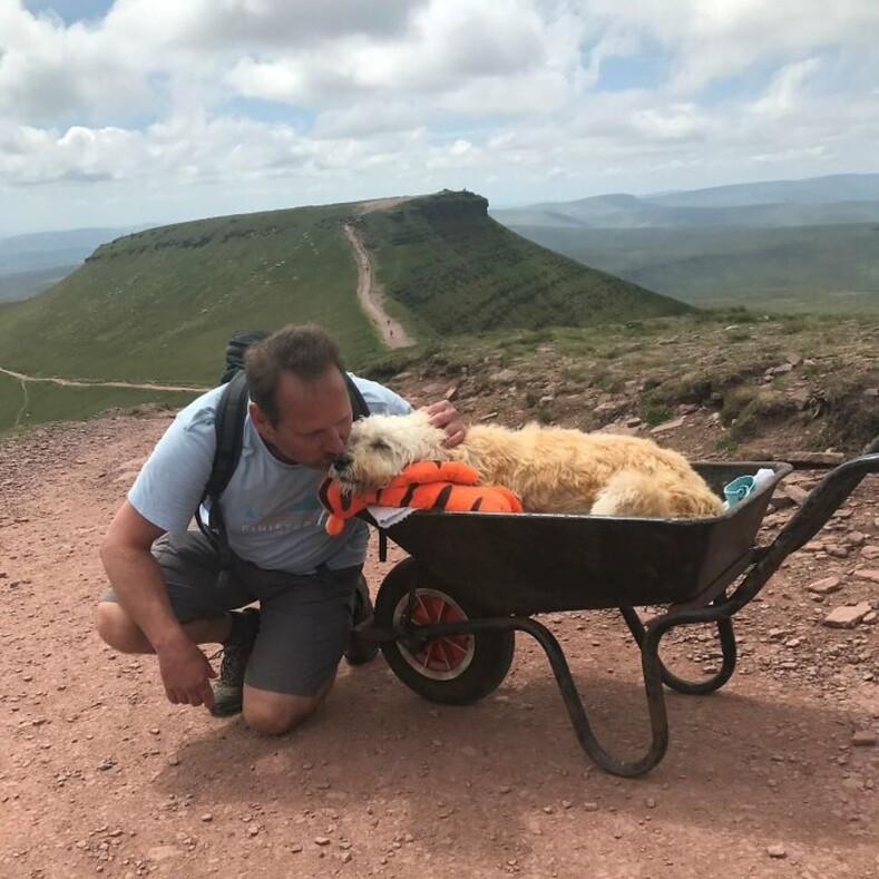 Мужчина поднял умирающую собаку на вершину горы, чтобы облегчить своему другу последние дни