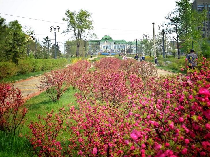 Весна в Хабаровске