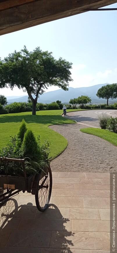 С 6 августа в Италии вводятся новые правила посещения закрытых мест скопления населения