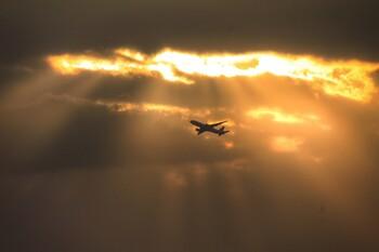 Семь авиакомпаний РФ получат субсидии на семейные перелёты по стране