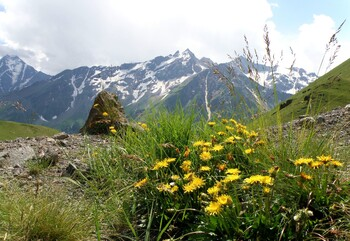 На Эльбрусе пройдёт экоакция «Чистая гора»