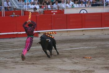В испанском городе отменили корриду из-за неполиткорректных кличек быков