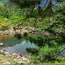 Озера балки Орленок