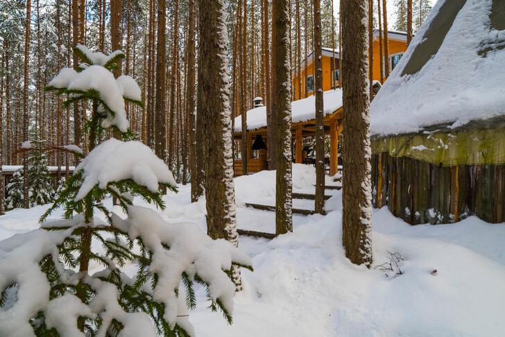 Что посмотреть в Петрозаводске зимой