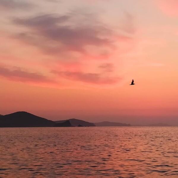 Тихое рассветное утро Фото Антона Семенова