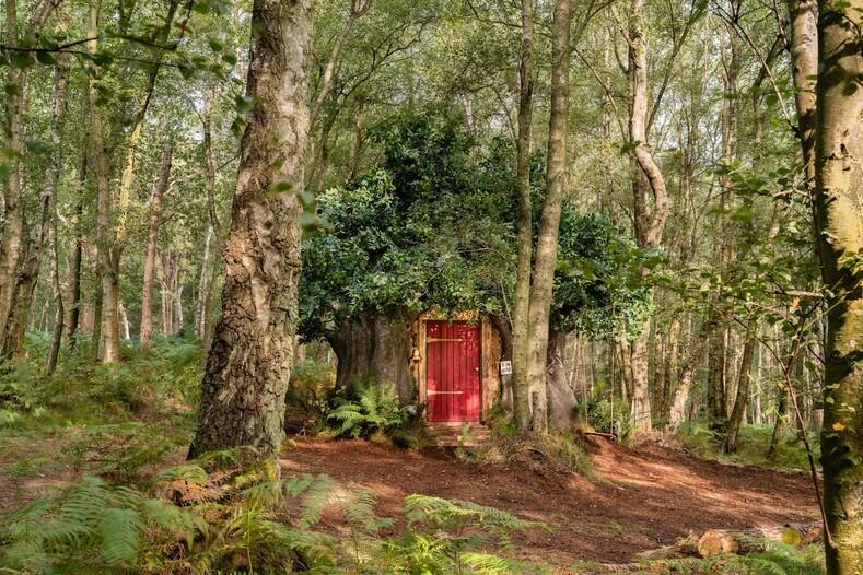 Иллюстратор Винни Пуха создал домик сказочного медведя, который можно арендовать на Airbnb