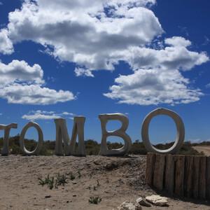 Пунта-Томбо. Аргентина