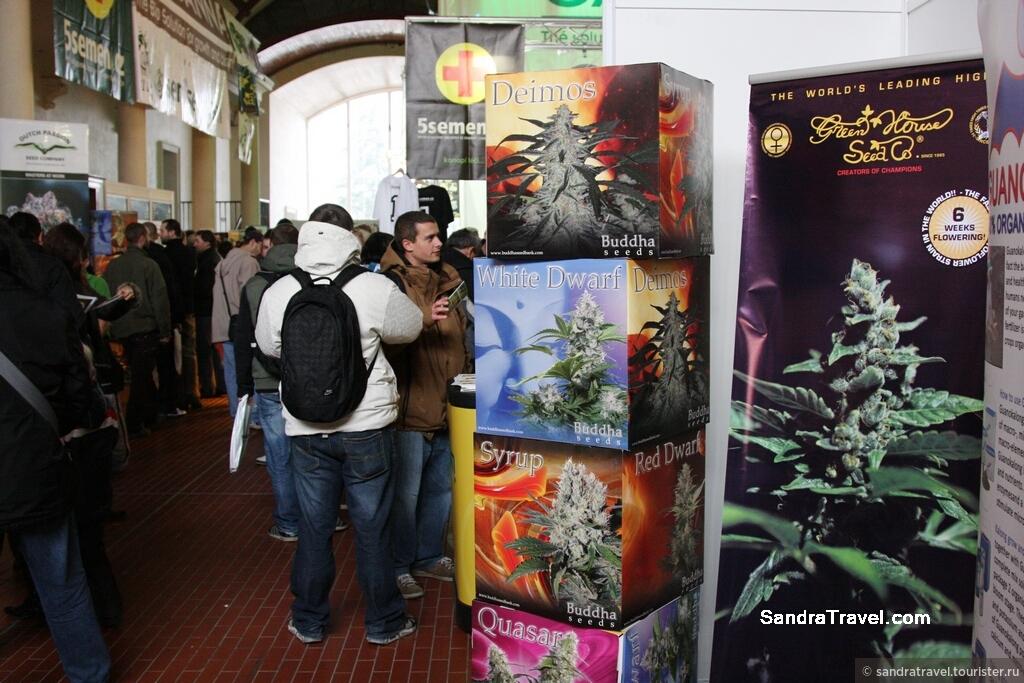 Марихуану праге покурить в краснодаре марихуаны