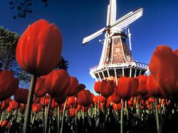 Туристер.ру поздравляет очаровательных путешественниц с 8 марта!