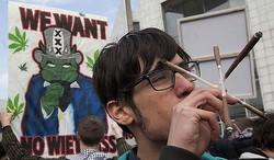 Туристы в Голландии больше не смогут покупать марихуану