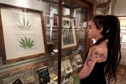 Крупнейший Музей марихуаны откроется в Барселоне