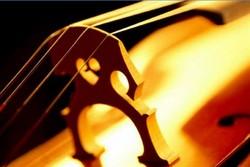 Музыканта не пустили в самолет из-за виолончели
