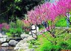 Baiyun Mountain9.jpeg