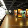 Музей португальского языка