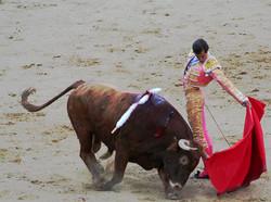 В Барселоне больше не будет проводиться коррида