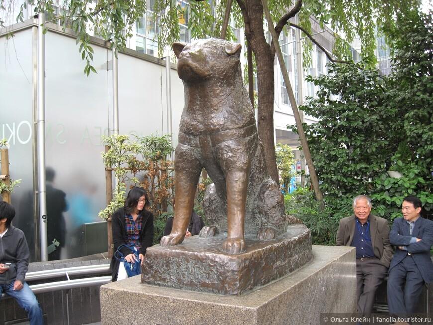 Памятник верной собаке Хатико у входа на станцию Сибуя