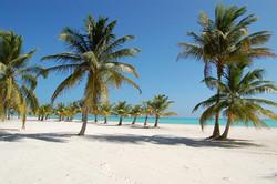 Чартеры свяжут Москву и Петербург с новым курортом Доминиканы