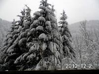 Зима в Шварцвальде.