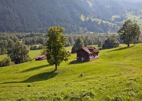 Grindelwald (Швейцария)
