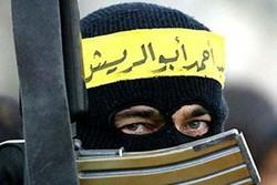В Шарм-эль-Шейхе предотвращен теракт
