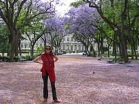 Южная Америка. Там сбываются мечты!