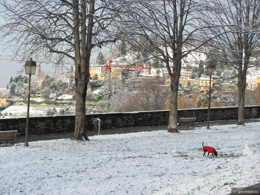 Bergamoinverno11.jpg