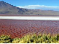 По боливийскому  высокогорью