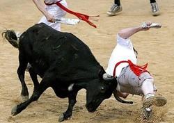 В Испании с арены вырвался бык, 30 пострадавших (Видео)