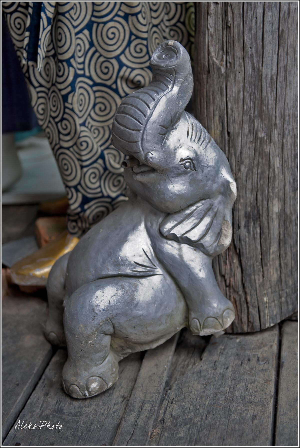 Слоны - настоящий символ Таиланда. Они здесь всюду..., 7 Плавучий рынок и его обитатели (Таиланд)