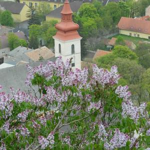 Венгрия Хевиз Весна