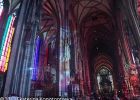 Собор Св. Стефана в Вене в новом свете/цвете