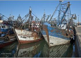 4. Среди рыболовецких кораблей (Марокко)