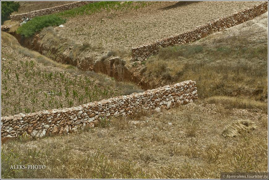 Периодически по пути попадались вот такие заборы из камней. Видимо, кто-то застолбил свою территорию.