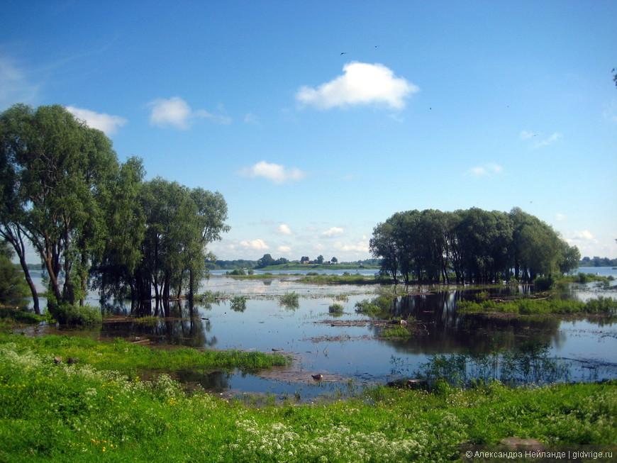 Вид на озеро Ильмень и Рюриково городище