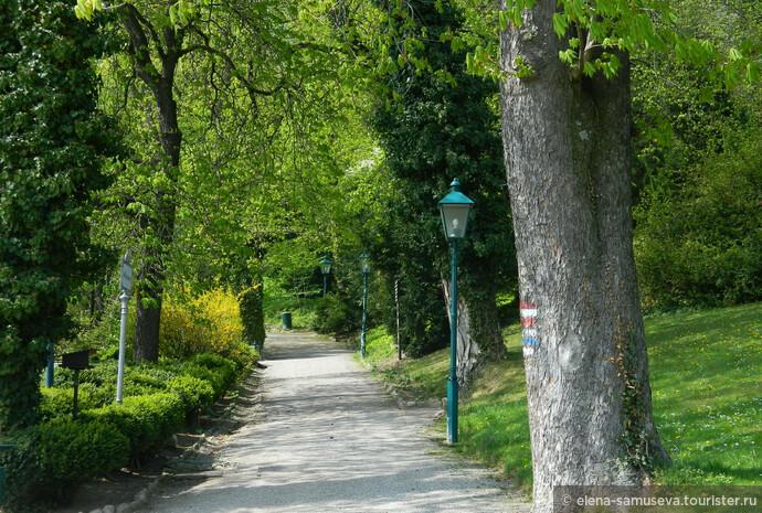 Весна в Бадене