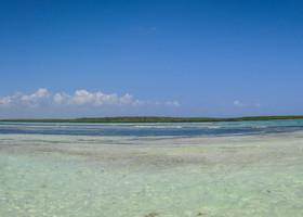 Место, где встречаются Атлантический океан и карибское море - огромнейшая отмель, глубиной от 0.5 до 1 метра. Сюда из океана приносит водоросли и невысокие волны.
