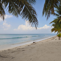 Чистейший, мелкий, как пыль, песок, теплый под жарким солнцем и прохладный в тени пальм, ласковое бирюзовое море - вот почему здесь хочется остаться навсегда...