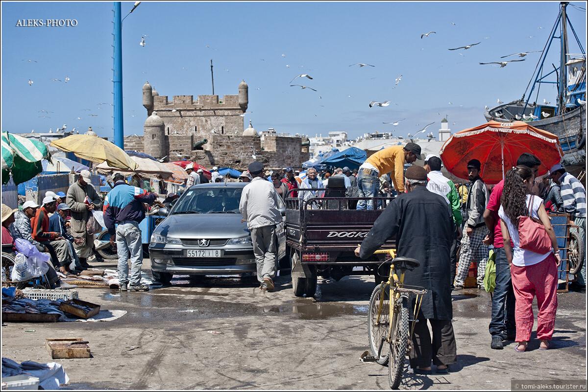 """Фото из альбома """"3. В царстве самых жирных чаек (Марокко)"""", Эс-Сувейра, Марокко"""
