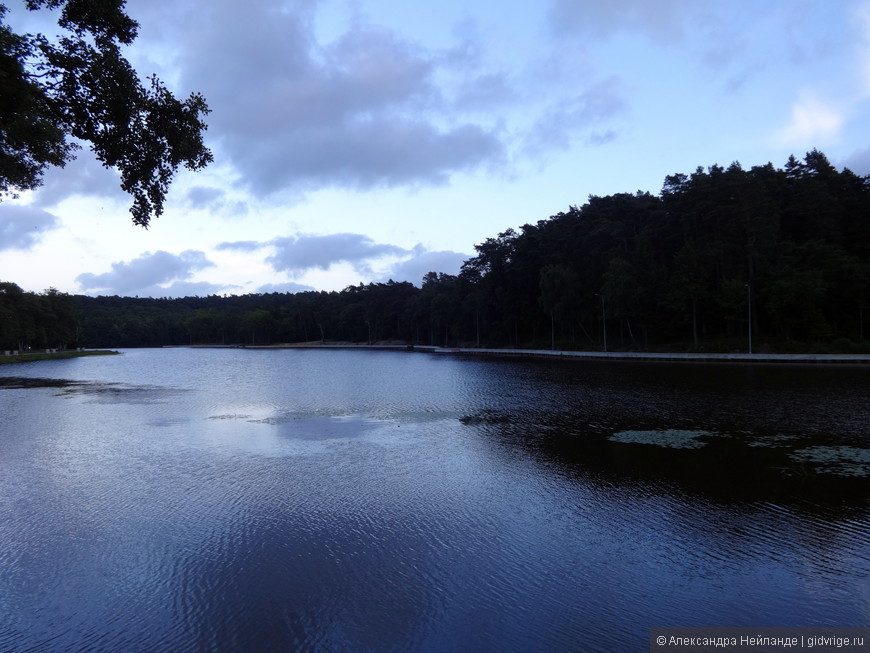 Озеро в Светлогорске
