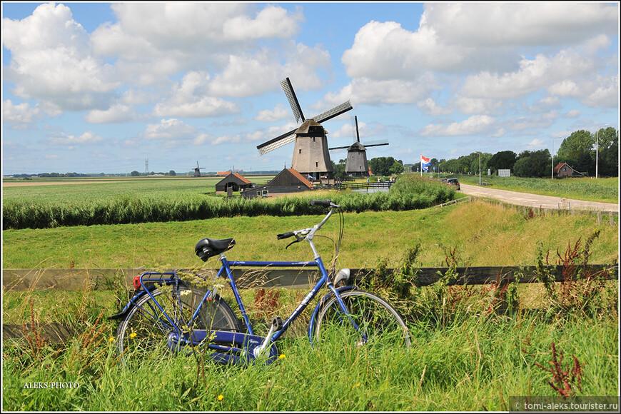 Тут в кадр попали сразу два атрибута Голландии...