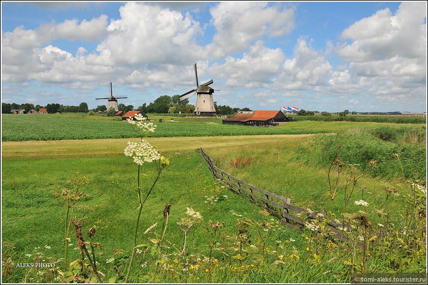Юля, моя коллега по увлечению фотографией из Голландии, водила нас по своим любимым тропкам...