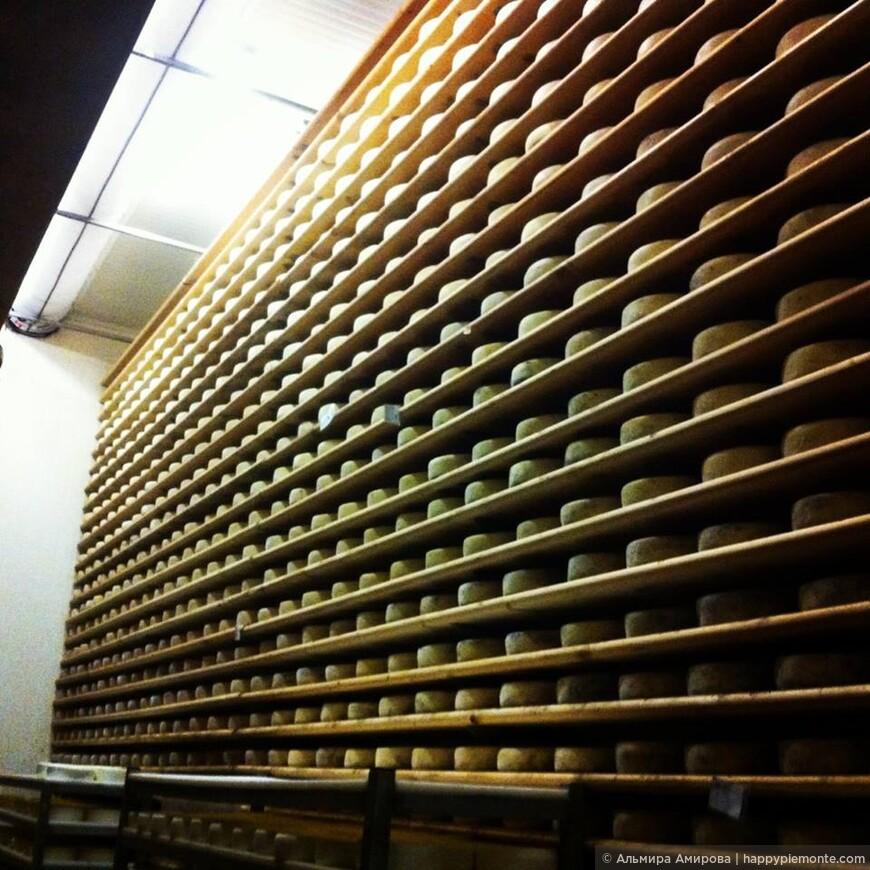 Производители итальянских сыров, ярмарки сыров, праздники и выставки Салон Вкуса (Salone del Gusto). для любой информации свяжитесь со мной по телефону (+39) 333 4500553 Viber  (+39) 380 4356325 Viber WatsApp e-mail:amirova.almira@libero.it www.turin.samomu.ru