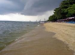 Пляж в Таиланде позеленел и стал источать дурной запах