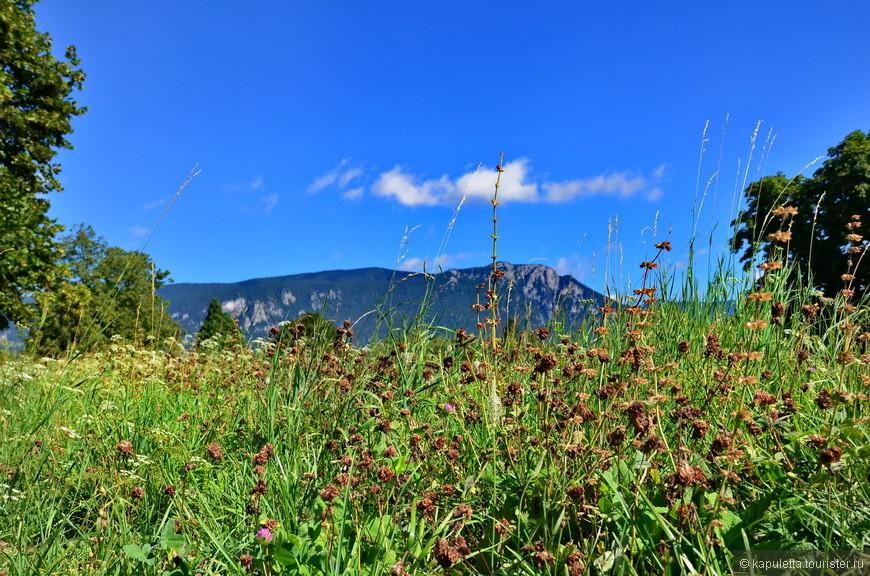 На горизонте - Юрские горы...