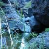 Еще один кусочек природы Тенерифе