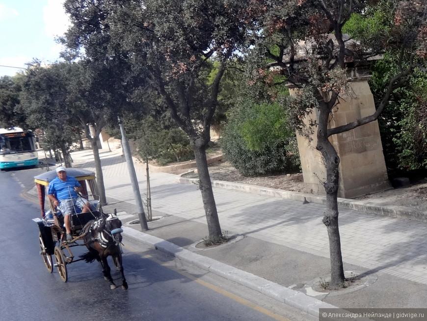 Мы обогнали мальтийскую коляску - karrozin.