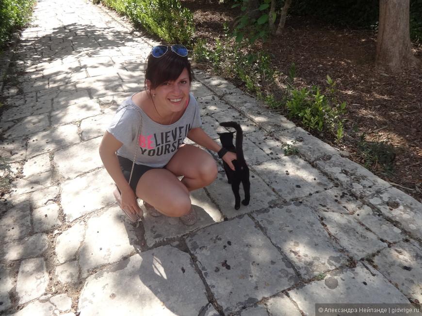 Мама! давай возьмем с собой котенка! Коты - неотъемлемая часть Президентских садов.