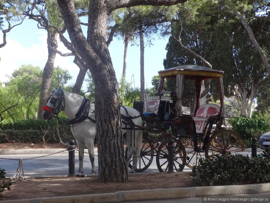 Так и хочется угнать коляску, да не разогнаться здесь - остров Мальта (24 км на 17 км) может неожиданно закончиться!