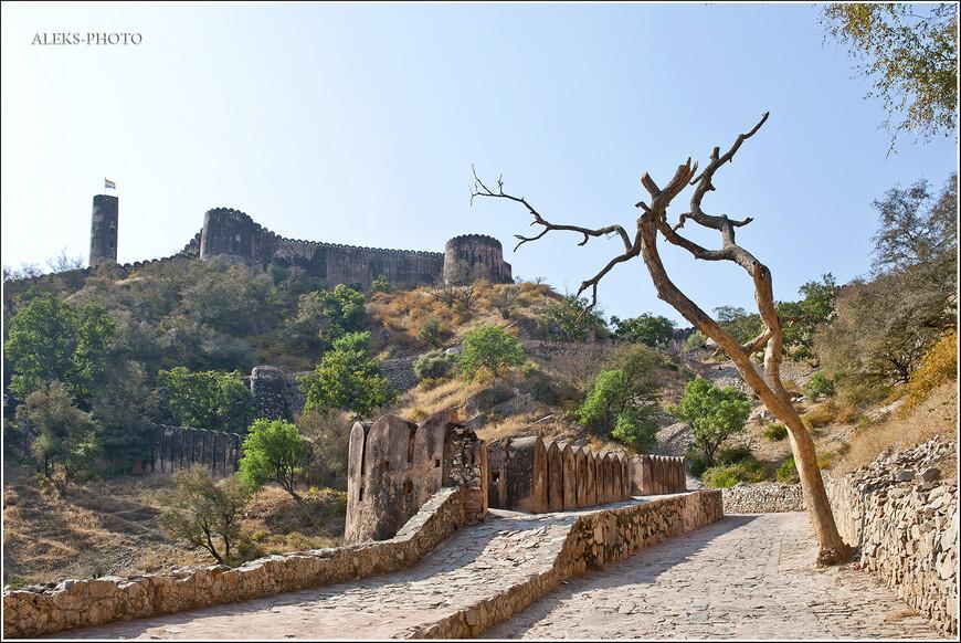 Когда мы ехали на электромобильчике к входу в форт Джайгарх, нашему взору открывались вот такие пейзажи...