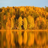 Что делать в Финляндии в октябре? Упала осень